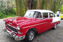 Cuba 2018 -  Cars  (12)