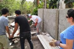 Cuba 2018 - Work Project  (15)