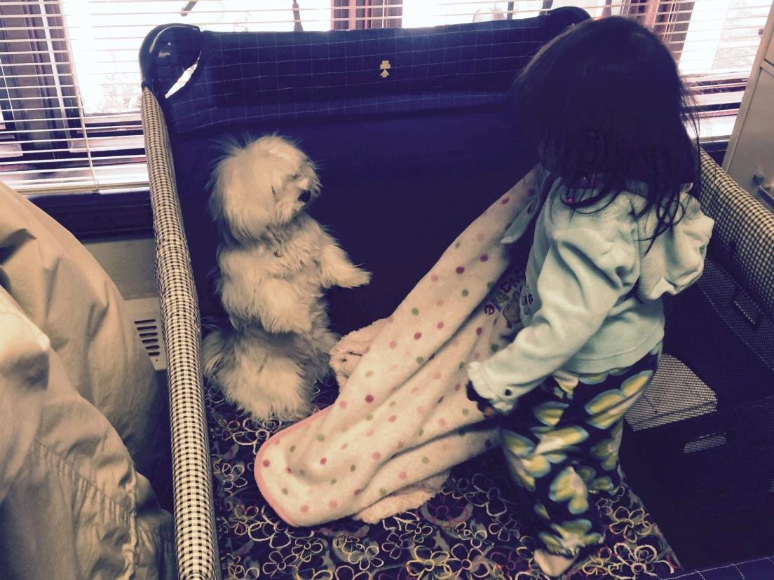 Pula and Indie in her crib