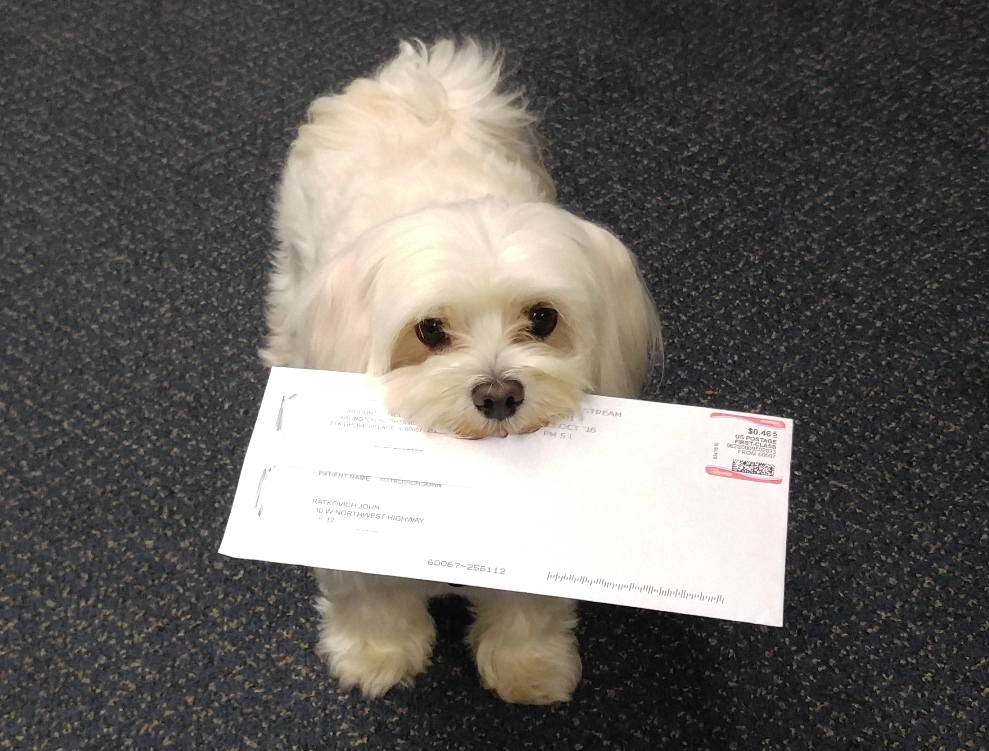Pula helping with the mail