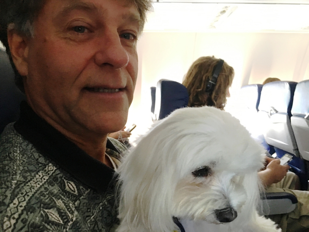 Pula on the plane 2017
