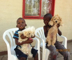 A puppy for each of them.  Shuby comes over every day and tells he that he knows Phoenix loves him!