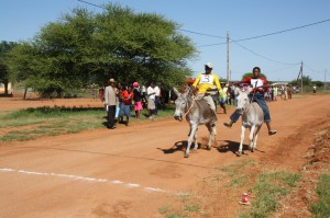 "Donkeys don't race so well.  The ""jockey"" seem to always get pushed off.  The donkeys often went off the main road and followed each other in herd fashion.  It was fun to watch"