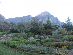 Cape-Town-South-Africa-2013_149.jpg